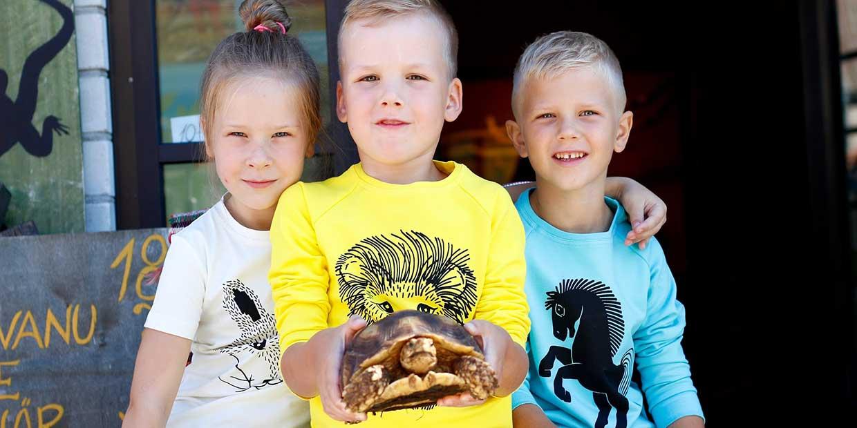 Lasten kanssa Virossa