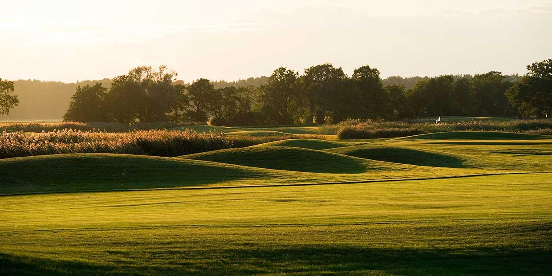 White Beach Golf, golfaamaan Viroon